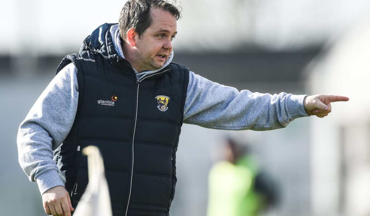 [Report] Davy Fitzgerald To Continue As Wexford Senior Hurling Manager